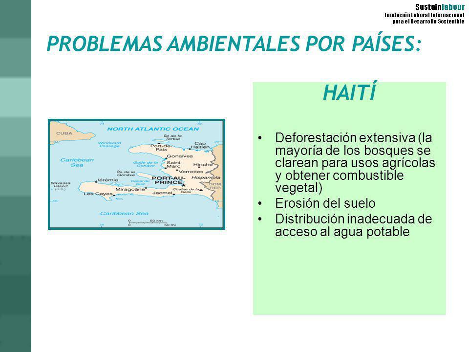 PROBLEMAS AMBIENTALES POR PAÍSES: HAITÍ Deforestación extensiva (la mayoría de los bosques se clarean para usos agrícolas y obtener combustible vegeta