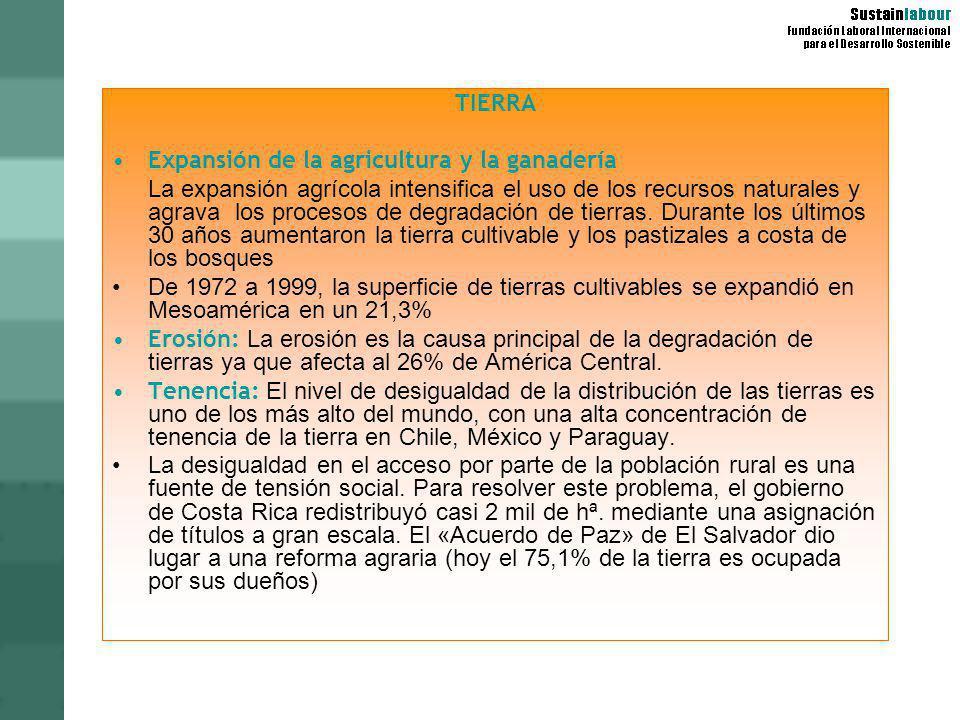 TIERRA Expansión de la agricultura y la ganadería La expansión agrícola intensifica el uso de los recursos naturales y agrava los procesos de degradac