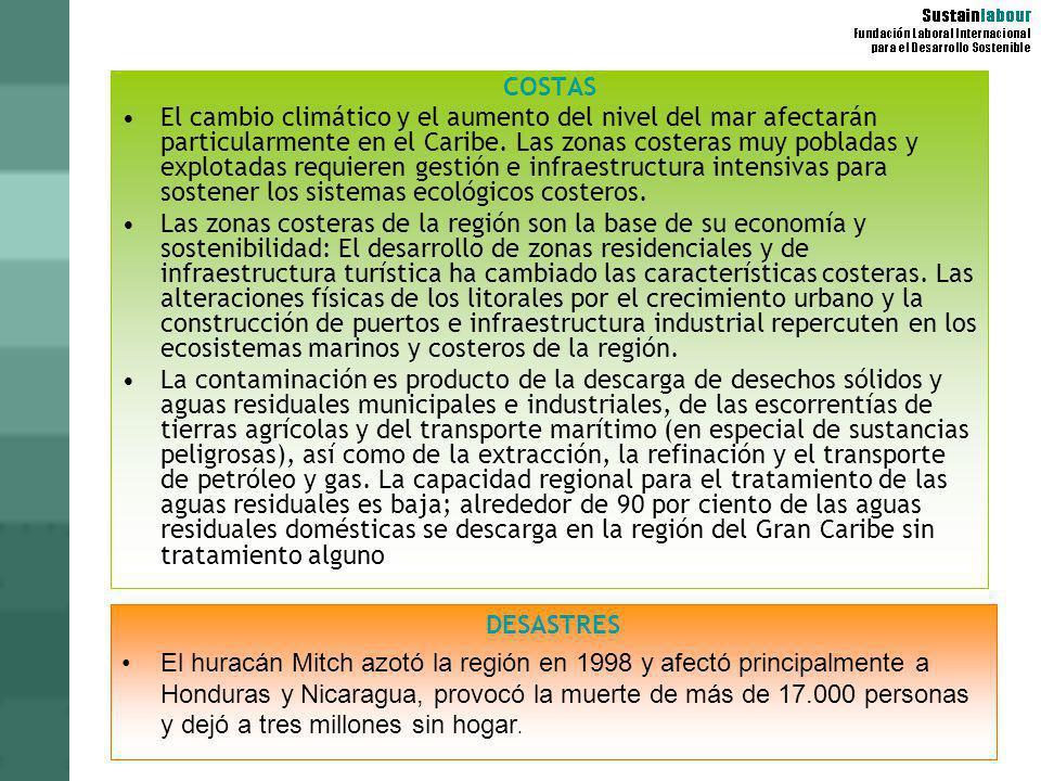 PROBLEMAS AMBIENTALES POR PAÍSES: HAITÍ Deforestación extensiva (la mayoría de los bosques se clarean para usos agrícolas y obtener combustible vegetal) Erosión del suelo Distribución inadecuada de acceso al agua potable