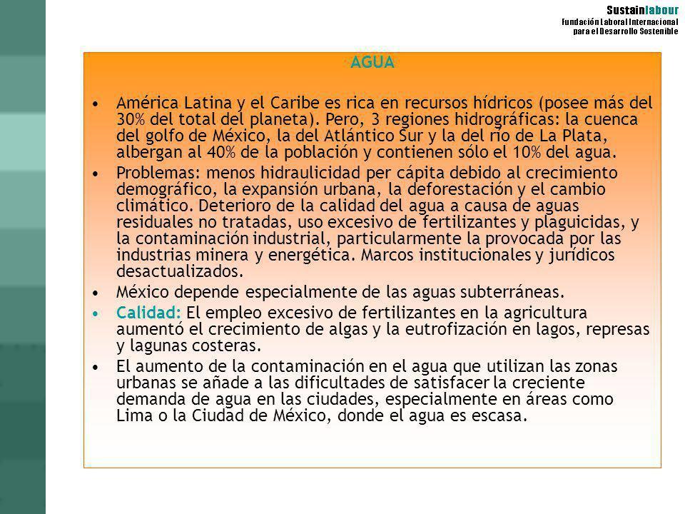 AGUA América Latina y el Caribe es rica en recursos hídricos (posee más del 30% del total del planeta). Pero, 3 regiones hidrográficas: la cuenca del
