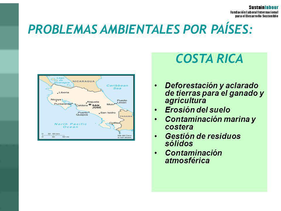PROBLEMAS AMBIENTALES POR PAÍSES: COSTA RICA Deforestación y aclarado de tierras para el ganado y agricultura Erosión del suelo Contaminación marina y