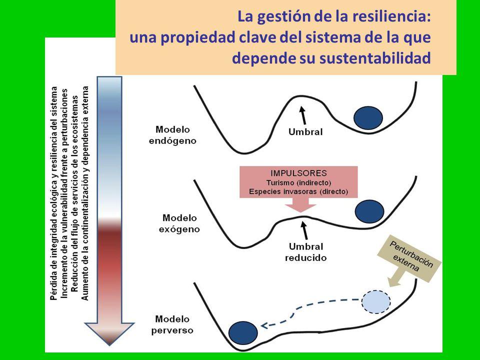 gsatostegui@ambiente.gov.ar La gestión de la resiliencia: una propiedad clave del sistema de la que depende su sustentabilidad