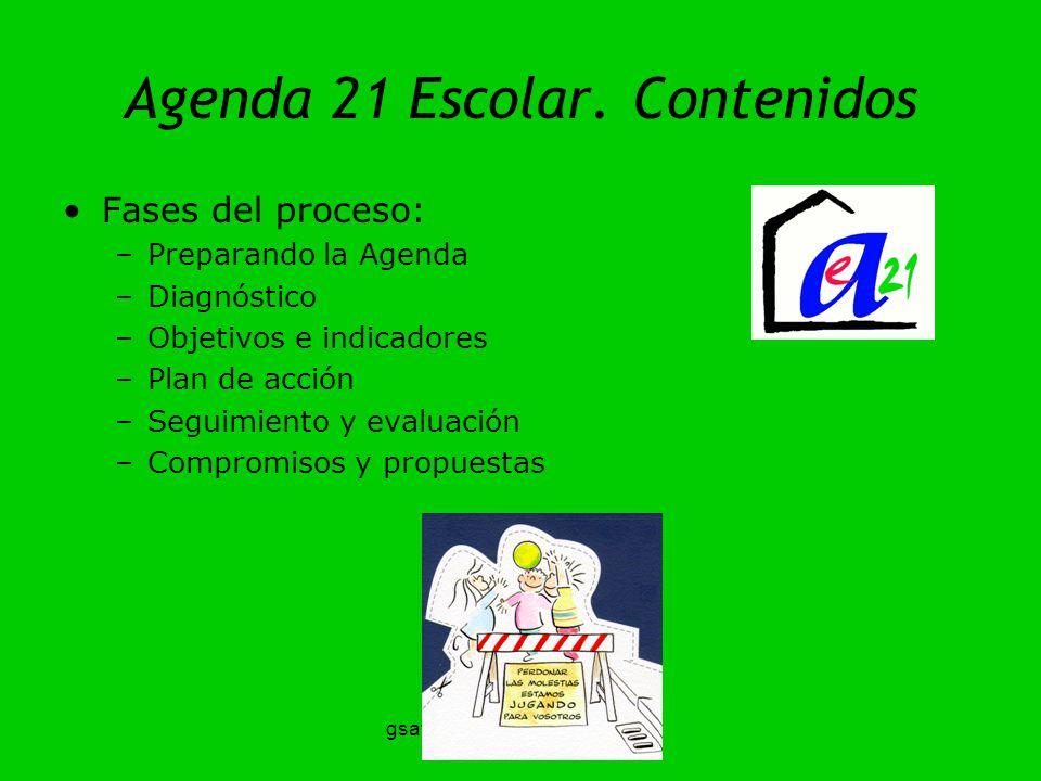 gsatostegui@ambiente.gov.ar Agenda 21 Escolar. Contenidos Fases del proceso: –Preparando la Agenda –Diagnóstico –Objetivos e indicadores –Plan de acci