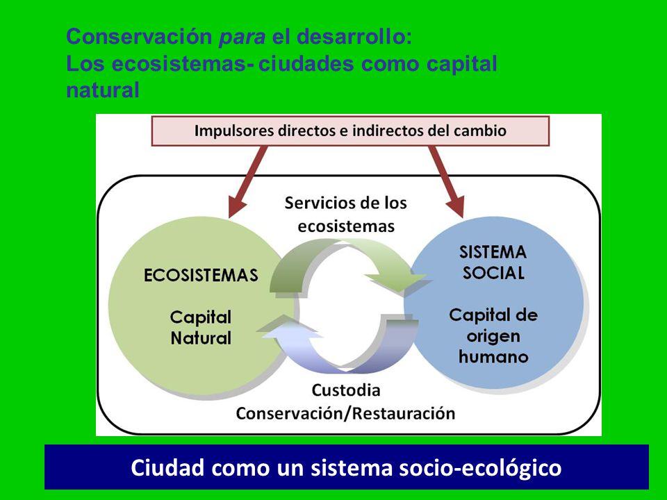 gsatostegui@ambiente.gov.ar Ciudad como un sistema socio-ecológico Conservación para el desarrollo: Los ecosistemas- ciudades como capital natural