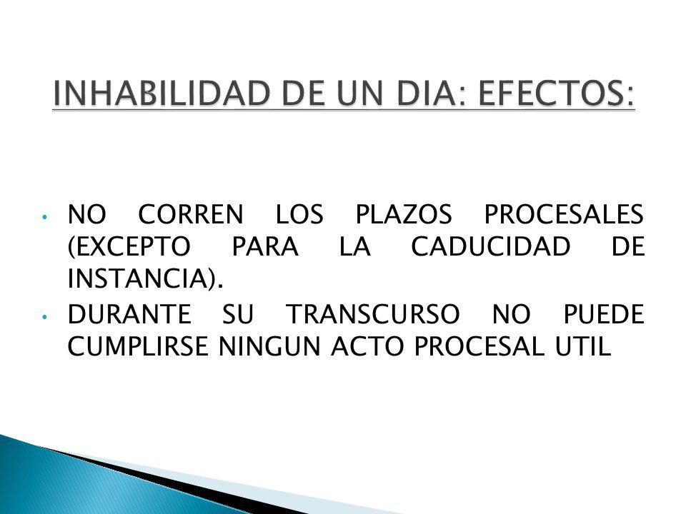 NO CORREN LOS PLAZOS PROCESALES (EXCEPTO PARA LA CADUCIDAD DE INSTANCIA).
