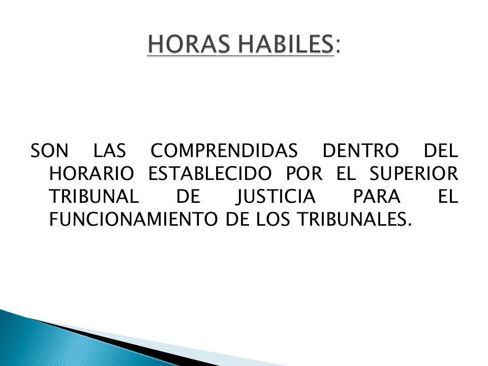 SON LAS COMPRENDIDAS DENTRO DEL HORARIO ESTABLECIDO POR EL SUPERIOR TRIBUNAL DE JUSTICIA PARA EL FUNCIONAMIENTO DE LOS TRIBUNALES.
