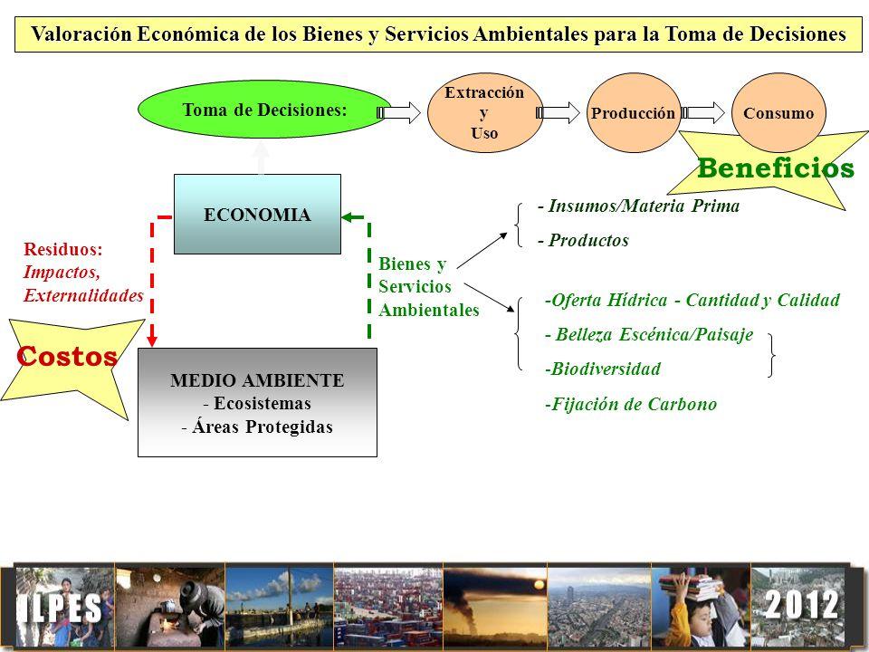 VALORIZACION ECONOMICA DEL MEDIO AMBIENTE Y LOS IMPACTOS AMBIENTALES Dos temas: Valorización económica del medio ambiente para la toma de decisiones de política pública Valorización económica de los impactos sobre el medio ambiente de las actividades de desarrollo (políticas, planes y proyectos)