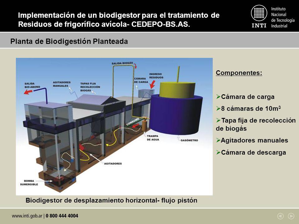 Sustratos de alimentación diaria al biodigestor: Planta de Biodigestión Planteada Biodigestor de desplazamiento horizontal- flujo pistón Componentes: Cámara de carga 8 cámaras de 10m 3 Tapa fija de recolección de biogás Agitadores manuales Cámara de descarga Implementación de un biodigestor para el tratamiento de Residuos de frigorífico avícola- CEDEPO-BS.AS.