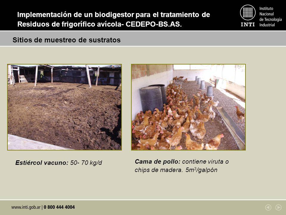 Estiércol vacuno: 50- 70 kg/d Cama de pollo: contiene viruta o chips de madera. 5m 3 /galpón Sitios de muestreo de sustratos Implementación de un biod