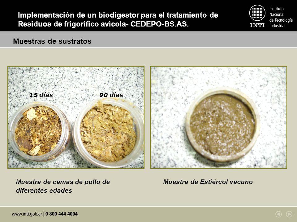 Muestra de camas de pollo de diferentes edades Muestra de Estiércol vacuno 15 días90 días Muestras de sustratos