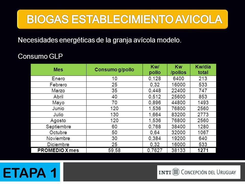 Necesidades energéticas de la granja avícola modelo. Consumo GLP MesConsumo g/pollo Kw/ pollo Kw /pollos Kw/día total Enero100,1286400213 Febrero250,3
