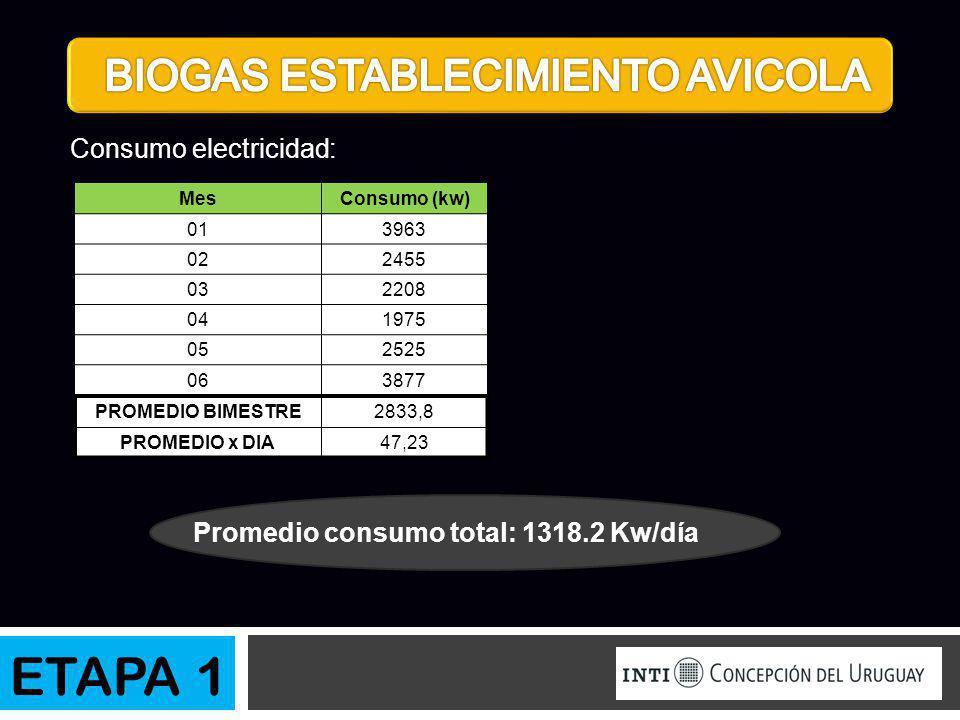Consumo electricidad: Promedio consumo total: 1318.2 Kw/día MesConsumo (kw) 013963 022455 032208 041975 052525 063877 PROMEDIO BIMESTRE2833,8 PROMEDIO
