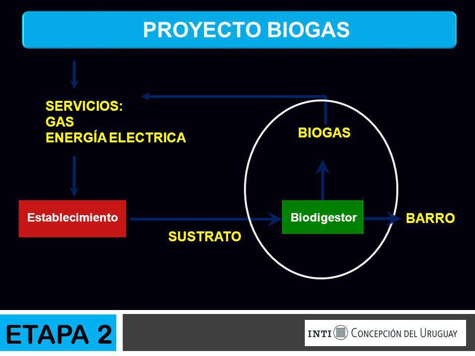 PROYECTO BIOGAS SUSTRATO BIOGAS SERVICIOS: GAS ENERGÍA ELECTRICA EstablecimientoBiodigestor ETAPA 2 BARRO