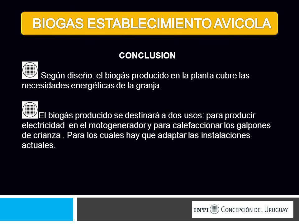 CONCLUSION Según diseño: el biogás producido en la planta cubre las necesidades energéticas de la granja. El biogás producido se destinará a dos usos: