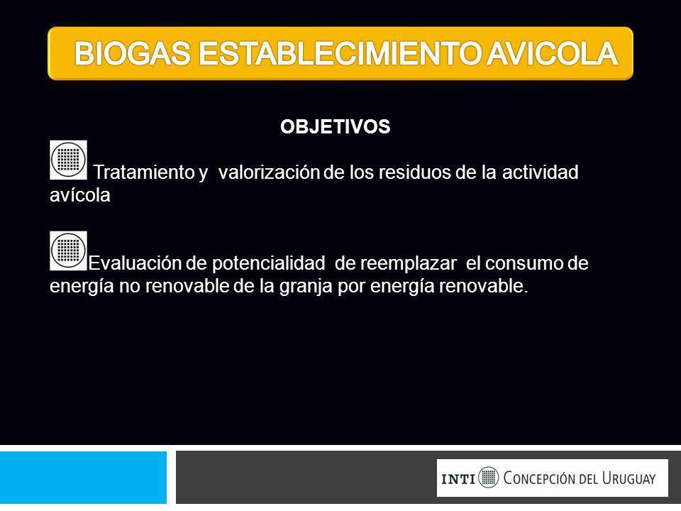 OBJETIVOS Tratamiento y valorización de los residuos de la actividad avícola Evaluación de potencialidad de reemplazar el consumo de energía no renova
