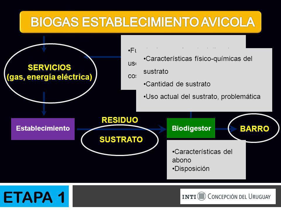 SUSTRATO BIOGAS BARRO SERVICIOS (gas, energía eléctrica) RESIDUO EstablecimientoBiodigestor Fuente de energía actual, tipo de uso, frecuencia de uso,