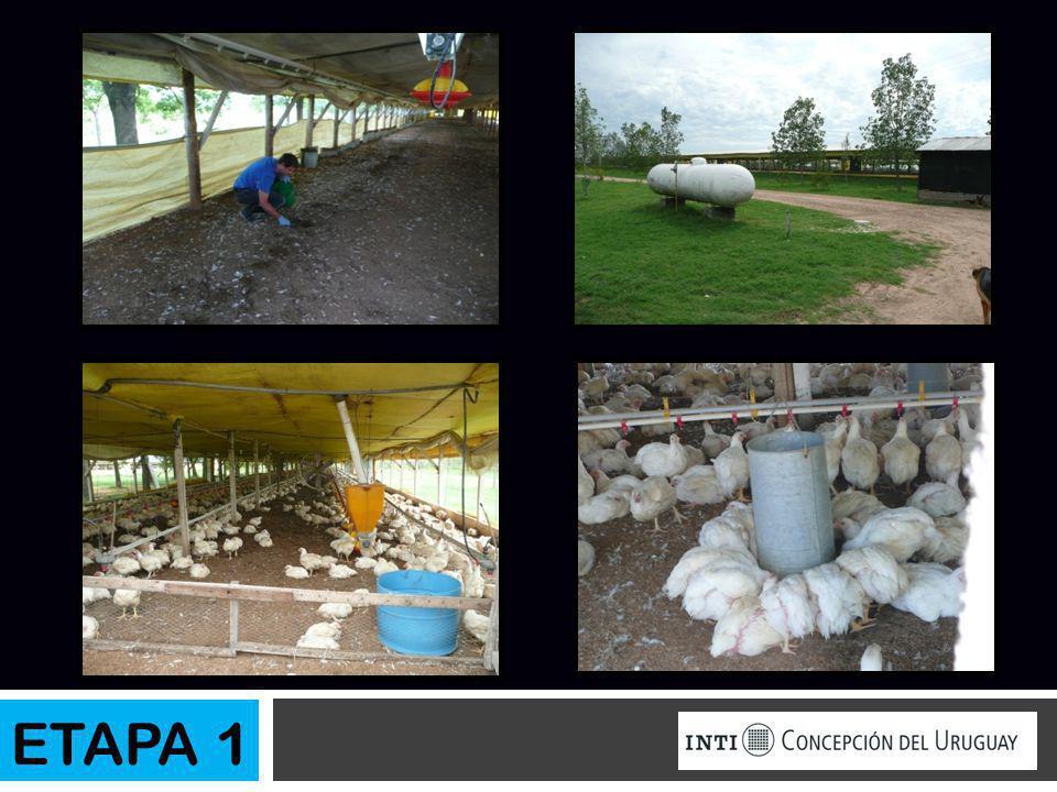 8.Diseño de biodigestor Datos de la mezcla Producción de biogás (Guano + Cama) x Pollo ( kg/Día) Pollos/ granja (Guano + cama) original por día (t) Sólidos totales ST(%) Sólidos volátiles SV(%) 0,0170500000,858087 ETAPA 2 Suma biogás (m 3 /día) Metano (Vol.