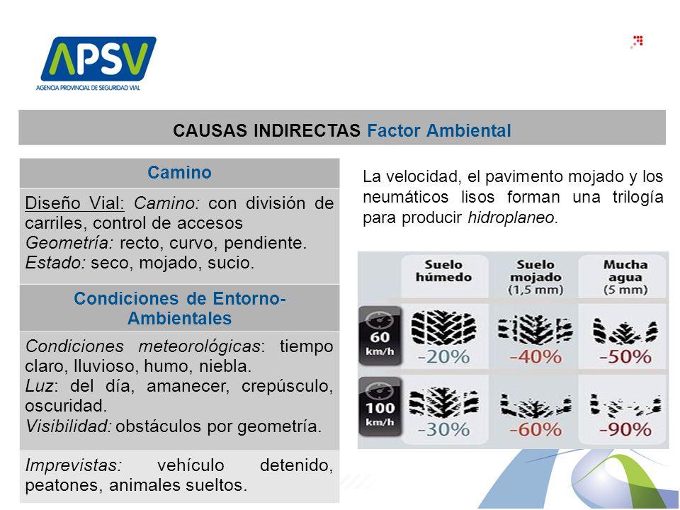 30 CAUSAS INDIRECTAS Factor Ambiental Camino Diseño Vial: Camino: con división de carriles, control de accesos Geometría: recto, curvo, pendiente.