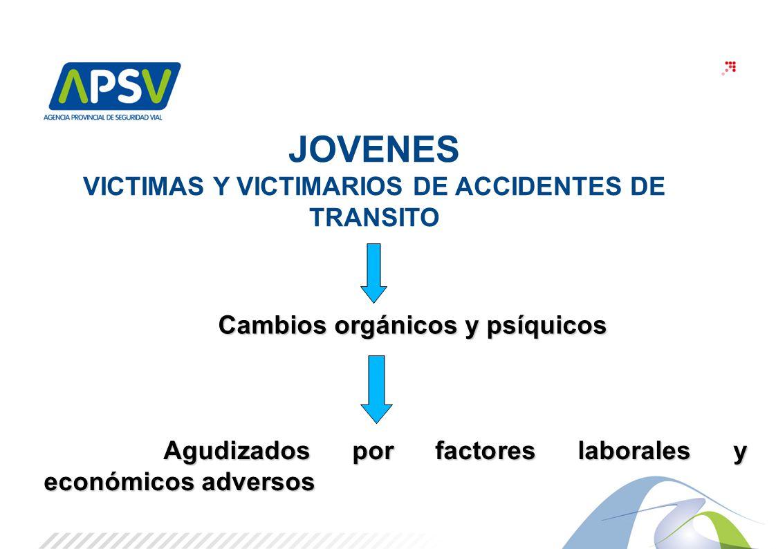 3 JOVENES VICTIMAS Y VICTIMARIOS DE ACCIDENTES DE TRANSITO Cambios orgánicos y psíquicos Cambios orgánicos y psíquicos Agudizados por factores laboral