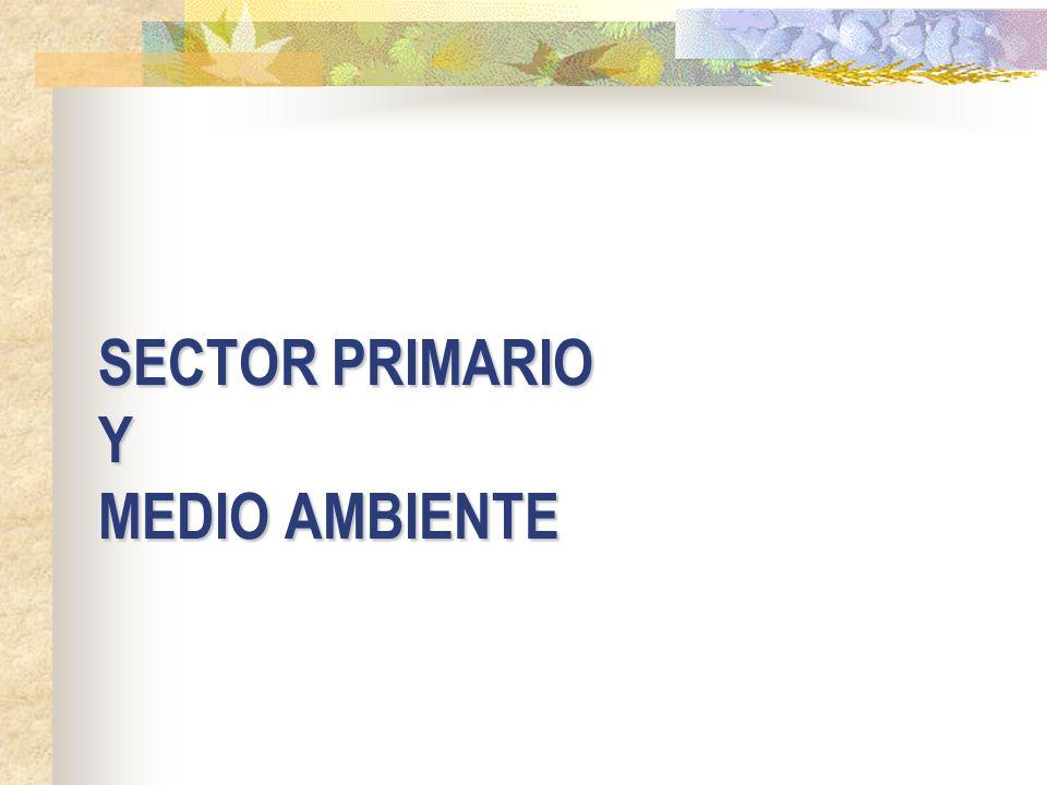 SECTOR PRIMARIO Y MEDIO AMBIENTE