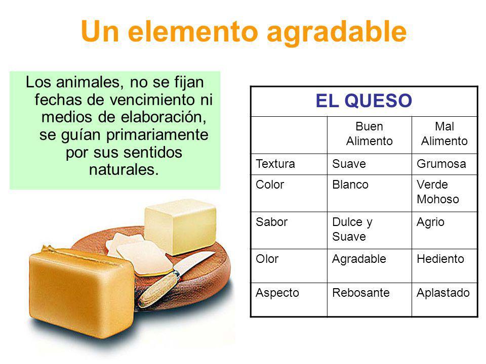 Tipos de alimentos Genuino: contiene sustancias autorizadas y se expende con rotulados y denominaciones legales (sin datos engañosos) en cuanto su origen naturaleza y calidad.