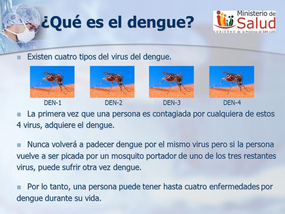 ¿Qué es el dengue.Existen cuatro tipos del virus del dengue.