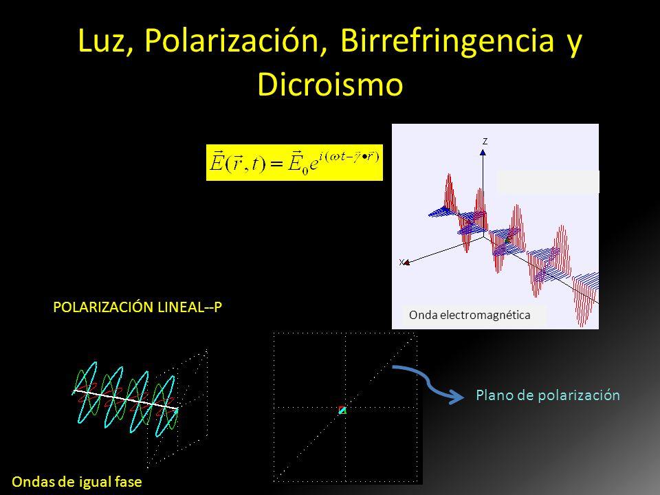 Luz, Polarización, Birrefringencia y Dicroismo Onda electromagnética POLARIZACIÓN LINEAL--P Plano de polarización Cdo. Hablamos de POLARIZACIÓN de la