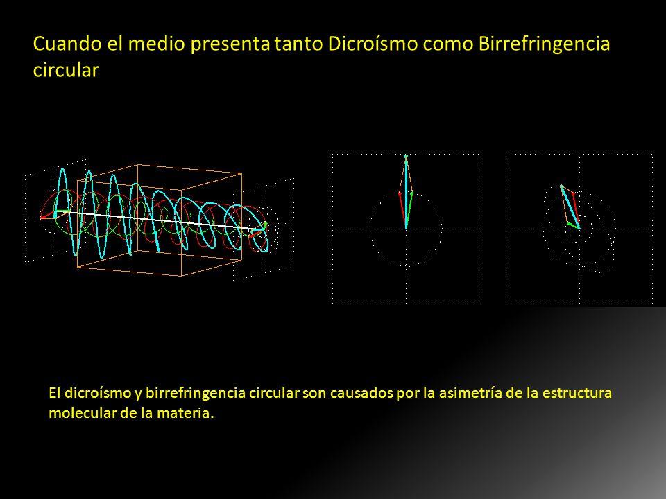 Cuando el medio presenta tanto Dicroísmo como Birrefringencia circular La onda P incidente se hace una onda elíptica debido al dicroismo, y el eje lar
