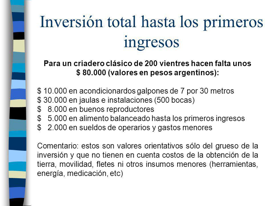 Inversión total hasta los primeros ingresos Para un criadero clásico de 200 vientres hacen falta unos $ 80.000 (valores en pesos argentinos): $ 10.000