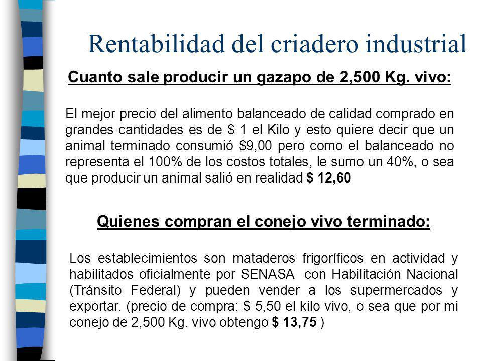 Rentabilidad del criadero industrial Cuanto sale producir un gazapo de 2,500 Kg. vivo: El mejor precio del alimento balanceado de calidad comprado en