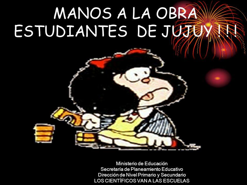 MANOS A LA OBRA ESTUDIANTES DE JUJUY .