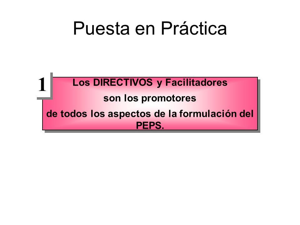 Puesta en Práctica Los DIRECTIVOS y Facilitadores son los promotores de todos los aspectos de la formulación del PEPS.