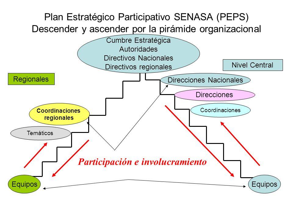Plan Estratégico Participativo SENASA (PEPS) Descender y ascender por la pirámide organizacional Cumbre Estratégica Autoridades Directivos Nacionales Directivos regionales Participación e involucramiento Direcciones Coordinaciones regionales Equipos Regionales Nivel Central Direcciones Nacionales Temáticos Coordinaciones