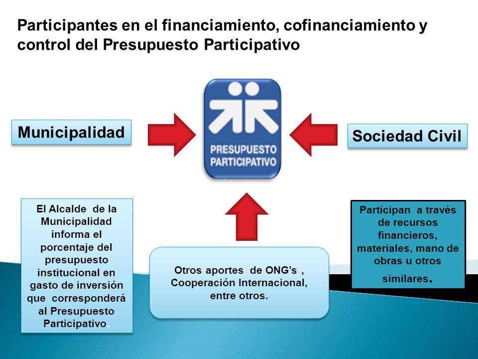 Participantes en el financiamiento, cofinanciamiento y control del Presupuesto Participativo El Alcalde de la Municipalidad informa el porcentaje del