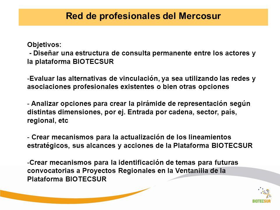 Red de profesionales del Mercosur Objetivos: - Diseñar una estructura de consulta permanente entre los actores y la plataforma BIOTECSUR -Evaluar las