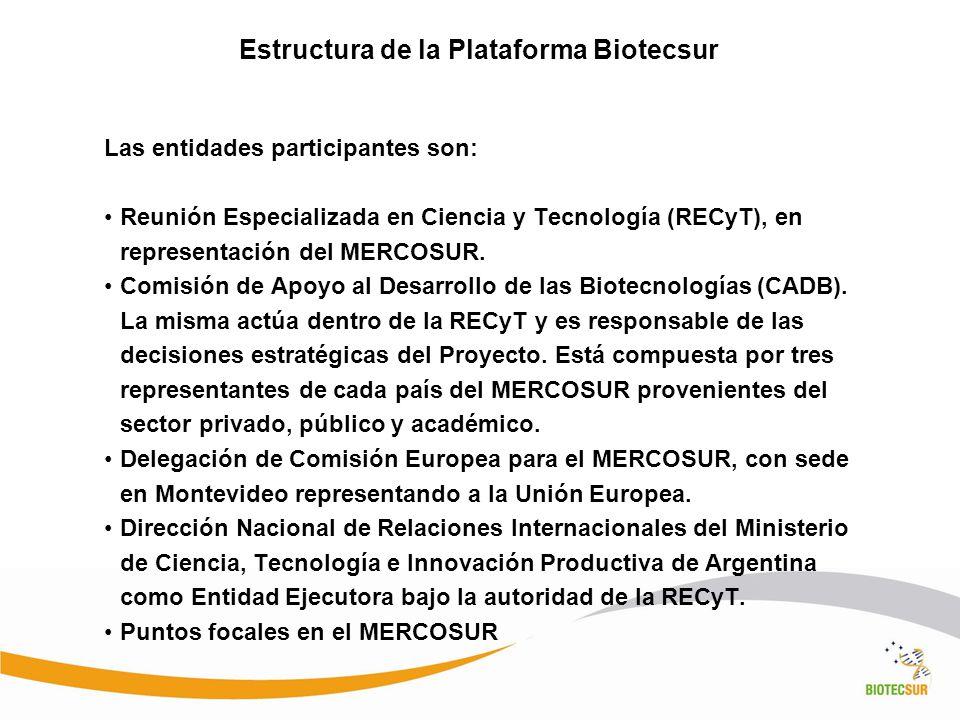 Estructura de la Plataforma Biotecsur Las entidades participantes son: Reunión Especializada en Ciencia y Tecnología (RECyT), en representación del ME