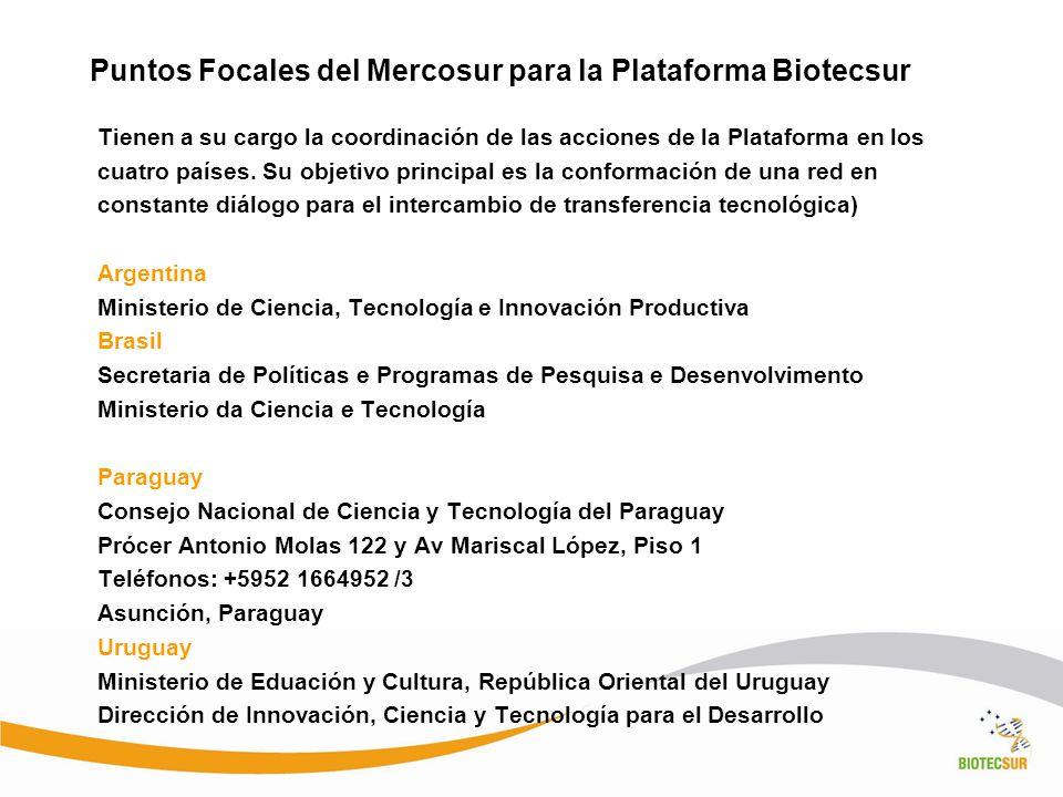 Puntos Focales del Mercosur para la Plataforma Biotecsur Tienen a su cargo la coordinación de las acciones de la Plataforma en los cuatro países. Su o