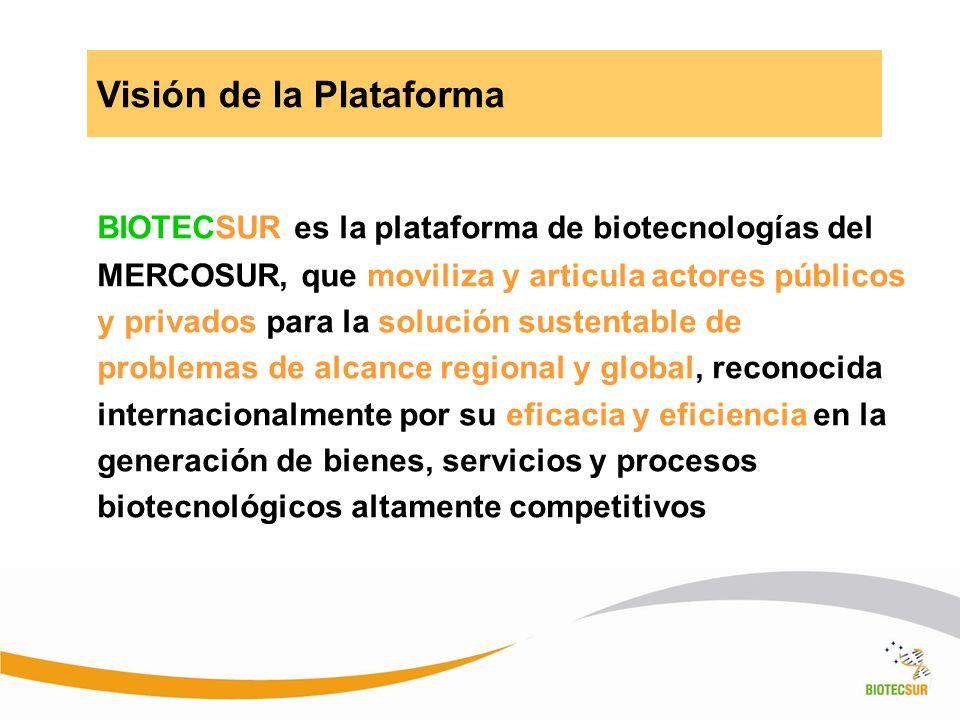 BIOTECSUR es la plataforma de biotecnologías del MERCOSUR, que moviliza y articula actores públicos y privados para la solución sustentable de problem