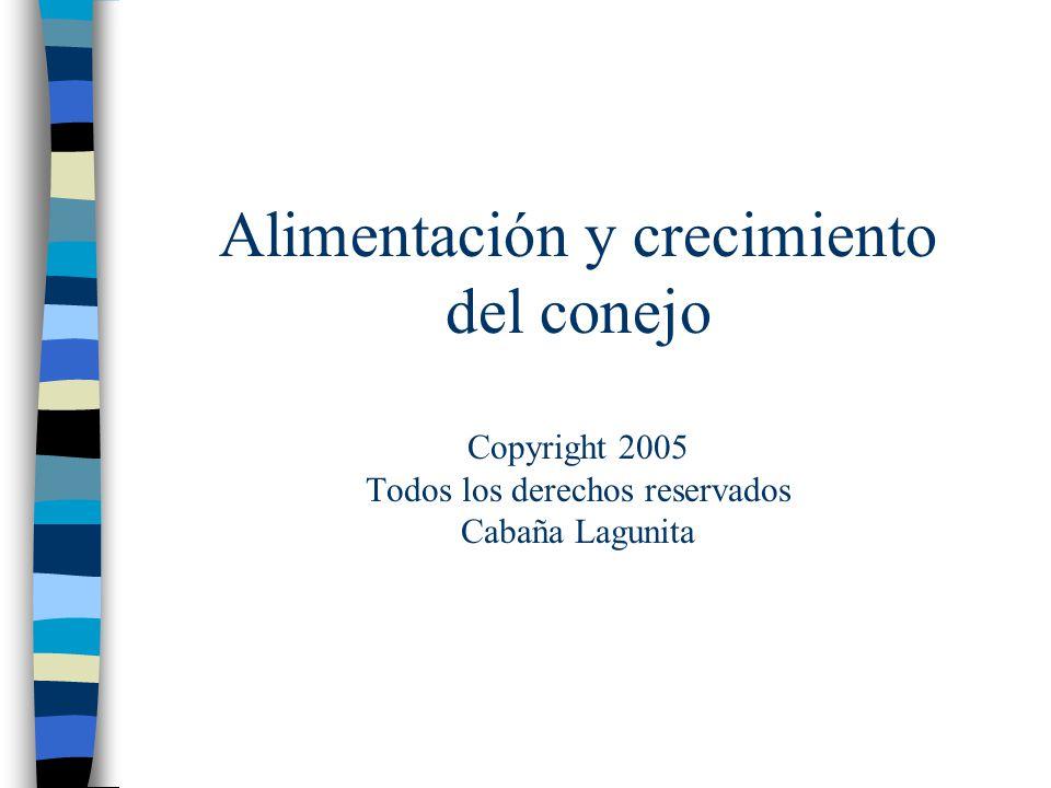 Alimentación y crecimiento del conejo Copyright 2005 Todos los derechos reservados Cabaña Lagunita