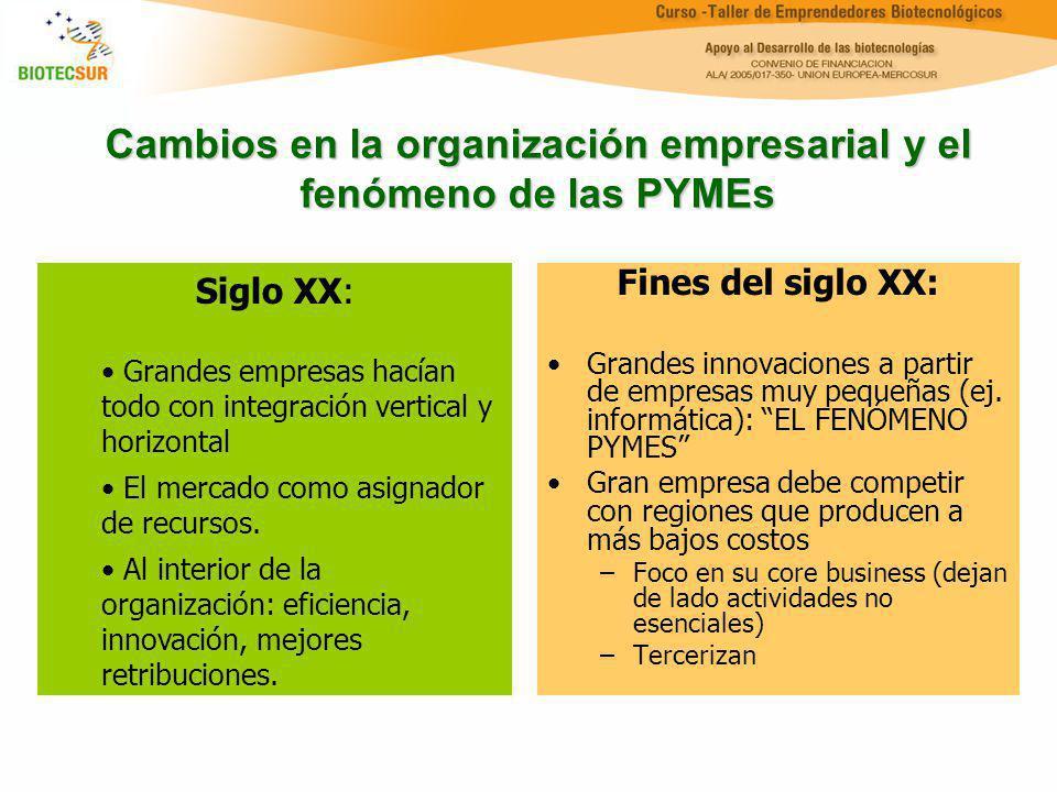 Cambios en la organización empresarial y el fenómeno de las PYMEs Fines del siglo XX: Grandes innovaciones a partir de empresas muy pequeñas (ej. info