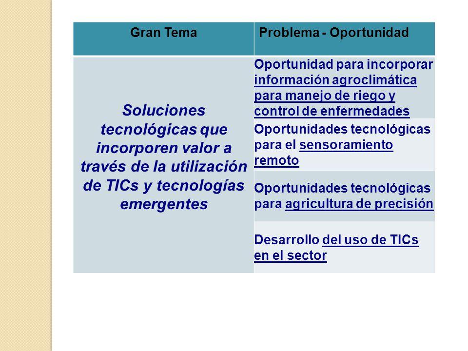 Gran TemaProblema - Oportunidad Soluciones tecnológicas que incorporen valor a través de la utilización de TICs y tecnologías emergentes Oportunidad para incorporar información agroclimática para manejo de riego y control de enfermedades Oportunidades tecnológicas para el sensoramiento remoto Oportunidades tecnológicas para agricultura de precisión Desarrollo del uso de TICs en el sector