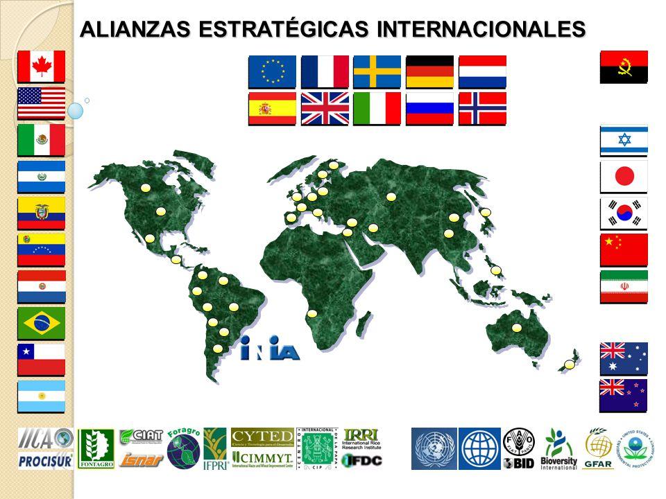 ALIANZAS ESTRATÉGICAS INTERNACIONALES