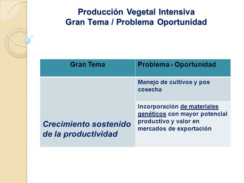 Producción Vegetal Intensiva Gran Tema / Problema Oportunidad Gran TemaProblema - Oportunidad Crecimiento sostenido de la productividad Manejo de cultivos y pos cosecha Incorporación de materiales genéticos con mayor potencial productivo y valor en mercados de exportación