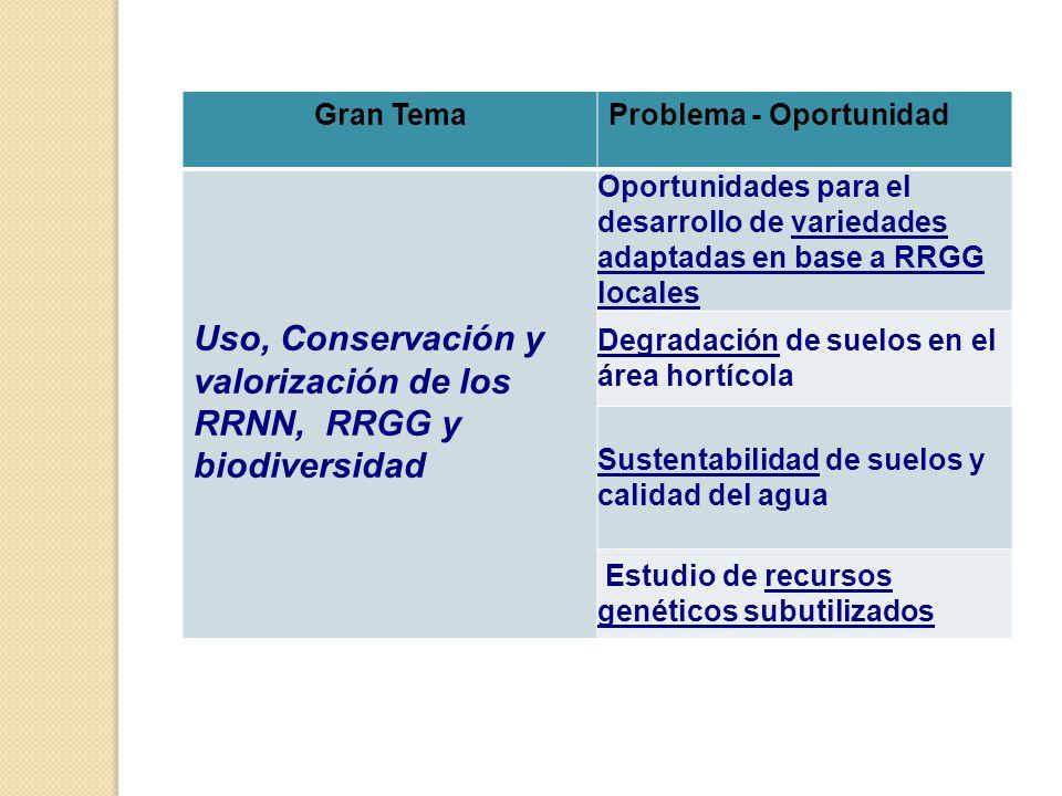 Gran TemaProblema - Oportunidad Uso, Conservación y valorización de los RRNN, RRGG y biodiversidad Oportunidades para el desarrollo de variedades adaptadas en base a RRGG locales Degradación de suelos en el área hortícola Sustentabilidad de suelos y calidad del agua Estudio de recursos genéticos subutilizados