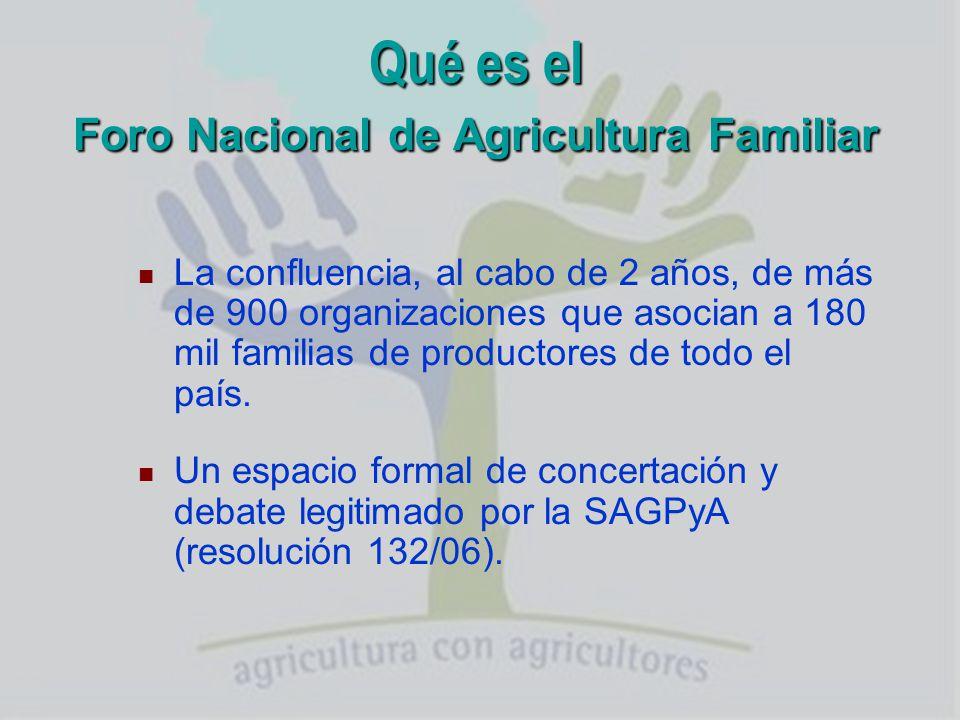 Integran el Foro Nacional de Agricultura Familiar Pequeños productores, colonos, minifundistas, campesinos, chacareros, medieros, puesteros, contratistas, arrenderos, comunidades de pueblos originarios, productores sin tierra.