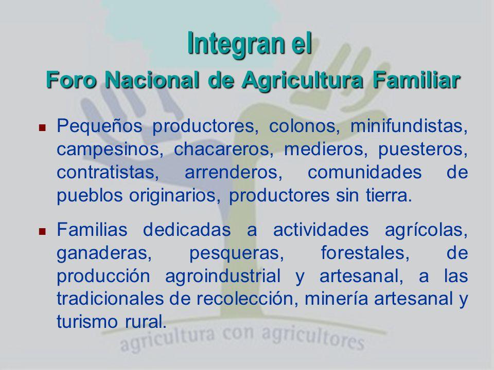 Funcionamiento del Foro Nacional de Agricultura Familiar Una Mesa Nacional: 2 delegados por provincia y 2 de Pueblos Originarios.