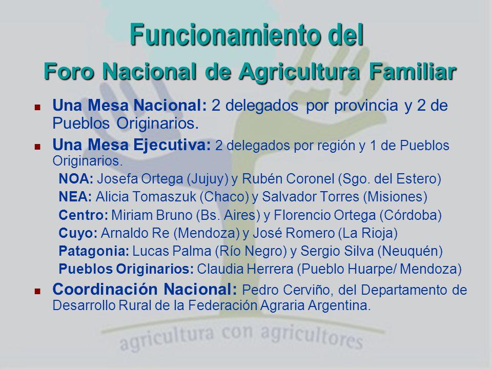 Funcionamiento del Foro Nacional de Agricultura Familiar Constitución del Foro Provincial con Representantes de cada organización.