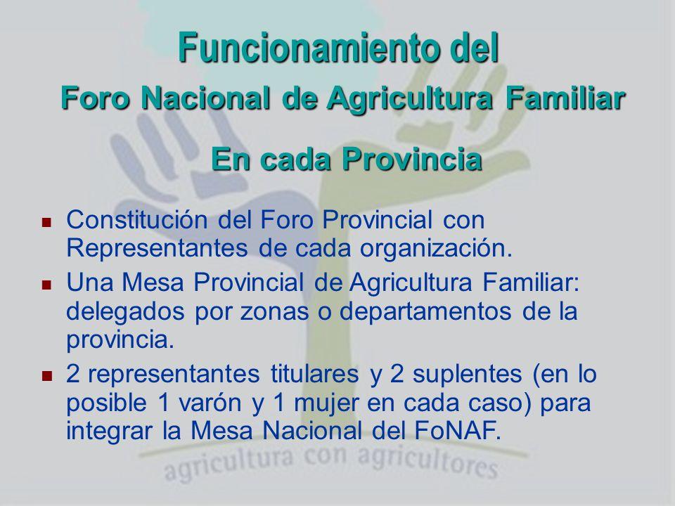 Un poco de historia (2004) Ámbito Regional (MERCOSUR)Ámbito Nacional Junio 04 Creación de la REAF (Buenos Aires) Sin participación de organizaciones.