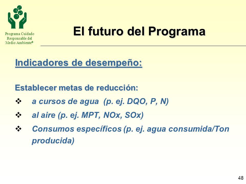 Programa Cuidado Responsable del Medio Ambiente ® 48 El futuro del Programa Establecer metas de reducción: a cursos de agua (p. ej. DQO, P, N) al aire
