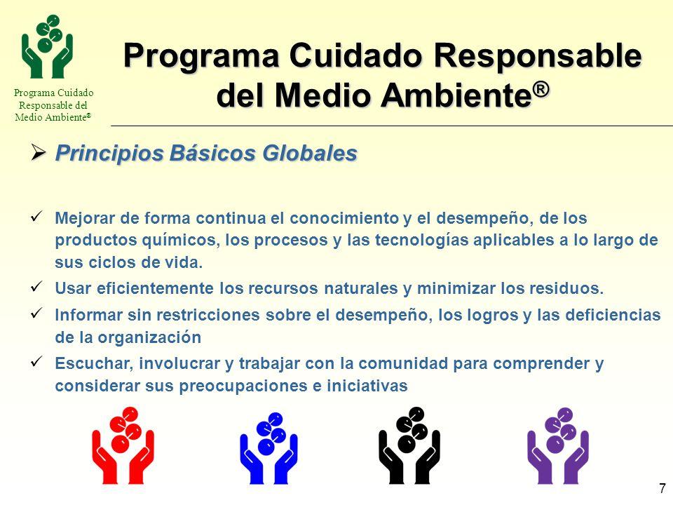 Programa Cuidado Responsable del Medio Ambiente ® 7 Principios Básicos Globales Principios Básicos Globales Mejorar de forma continua el conocimiento